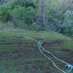 Solar Power Landscape Lighting and Weeding the Yard