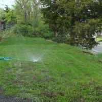 Modified sprinkler watering the peninsula lawn