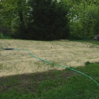 Working to Rebuild a Lawn in Poor Condition