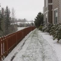 Winter Is Passing Me By to Visit Washington State! Noooooo!